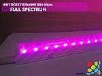 Світлодіодний фитосветильник для рослин, T8, 8 Вт, 60 см, фото 2