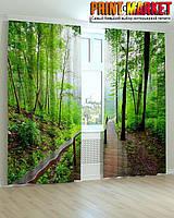Фотошторы лестница через лес