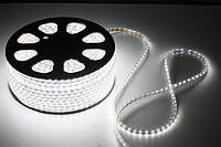Светодиодная лента LED 5050 белые диоды (бухта 100м), led лента светодиодная белая