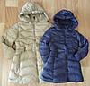 Куртка для девочек на синтипоне F&D оптом 5/6-15/16 лет. арт.1011