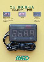 Вольтметр часы 24V AYRO красный дисплей, кнопка вкл/выкл