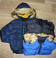 Куртка утепленная для мальчиков оптом Nature 10/11-16/17 лет. № RYB4619