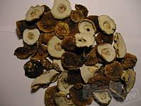Сушеная шапочка белого гриба
