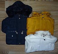Куртка утепленная для девочек оптом Nature 12/18-30/36 лет. № RSG-4854