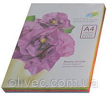 """Бумага офисная цветная """"Spectra Color"""" 100 л. (5х20) А4, 160 г/м2"""