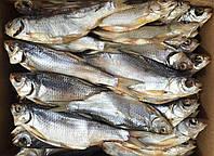 Продам вяленую рыбу, цена от производителя.