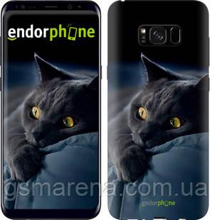 "Чехол на Samsung Galaxy S8 Plus Дымчатый кот ""825c-817-7794"", фото 2"