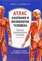 Елена Зигалова Атлас. Анатомия и физиология человека (19184)