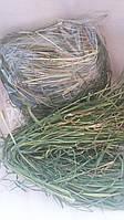 Сено натуральное для декора и композиций, 50 гр, 10