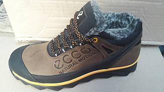 Мужские зимние кожаные ботинки ecco реплика