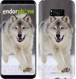 "Чехол на Samsung Galaxy S8 Plus Бегущий волк ""826c-817-7794"", фото 2"