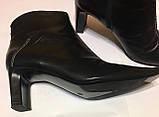 Шкіряні підлозі чобітки ботильйони donna 40 р, фото 2
