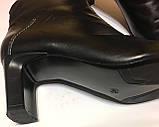 Шкіряні підлозі чобітки ботильйони donna 40 р, фото 3
