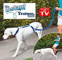 Поводок для собак Instant Trainer Leash купить в Украине