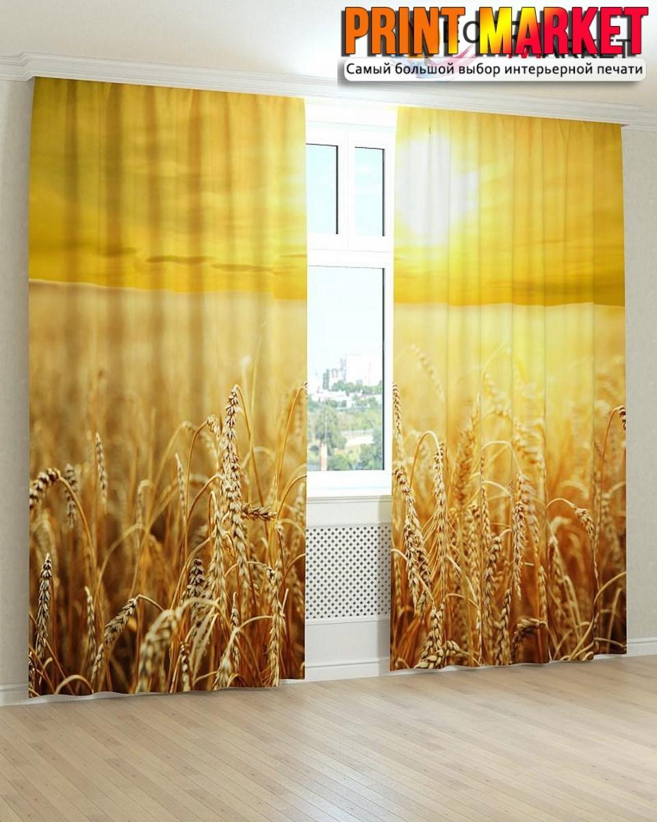 Фотошторы пшеница