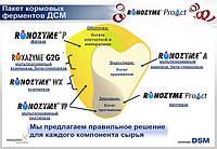 Универсальный мультиэнзимный препарат  РОКСАЗИМ G2G