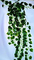 Свисающая зелень,кустовая зелень-виноград