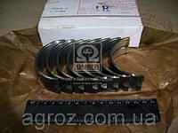 Вкладыши шатунные Р1 Д 144 АО10-С2 (пр-во ЗПС, г.Тамбов) Д144-1004150А1