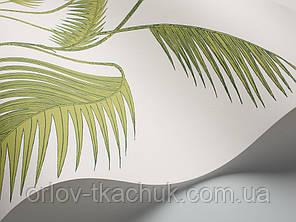 Обои флизелиновые Palm Cole&Son