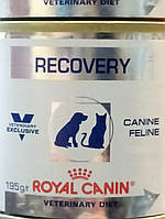 Консервы Рекавери Роял Канин195гр, послеоперационная диета для собак и кошек