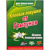 Клеевая ловушка Книжка от грызунов и насекомых