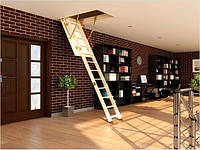 Чердачная лестница Fakro LWS 60х130х305