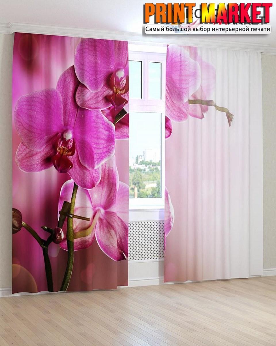 Фотошторы сиреневая орхидея