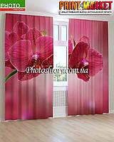 Фотошторы бордовая орхидея