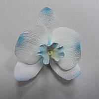 Орхидея голубая тонированная ∅80