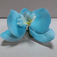 Орхидея голубая ∅80
