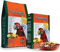 Корм для крупных попугаев Grandmix Pappagalli Padovan 2кг