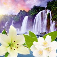Косметические отдушки для мыла, свечей, косметики ручной работы  Водопады Таити