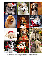 Печать картинок на водорастворимой картинки новогодние 6*6 см, вариант 1