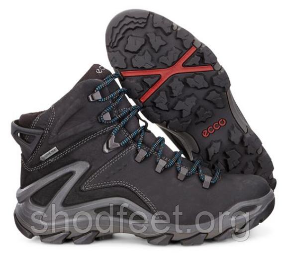 Мужские ботинки Ecco Terra Evo Gore-Tex 826504-51052