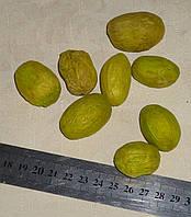Орехи салатовые