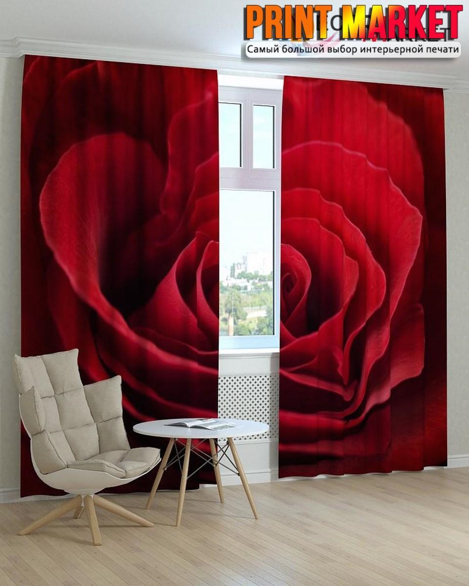 Фотошторы бордовая роза макро