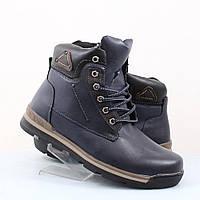 Мужские ботинки Stylen Gard (47995)