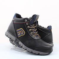Мужские ботинки Stylen Gard (47984)