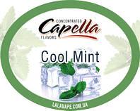 Ароматизатор Capella Cool Mint (Мята холодная)