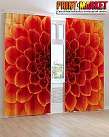 Фотошторы красно-оранжевый цветок 3d