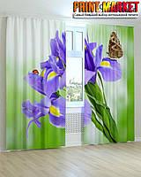 Фотошторы божья коровка и бабочка на цветах