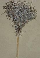 Сухоцвіт IREN BUSH провоскованый на гілці, фото 1
