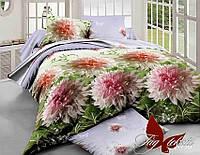 Комплект постельного белья XHY730 семейный (TAG polycotton-293/с)