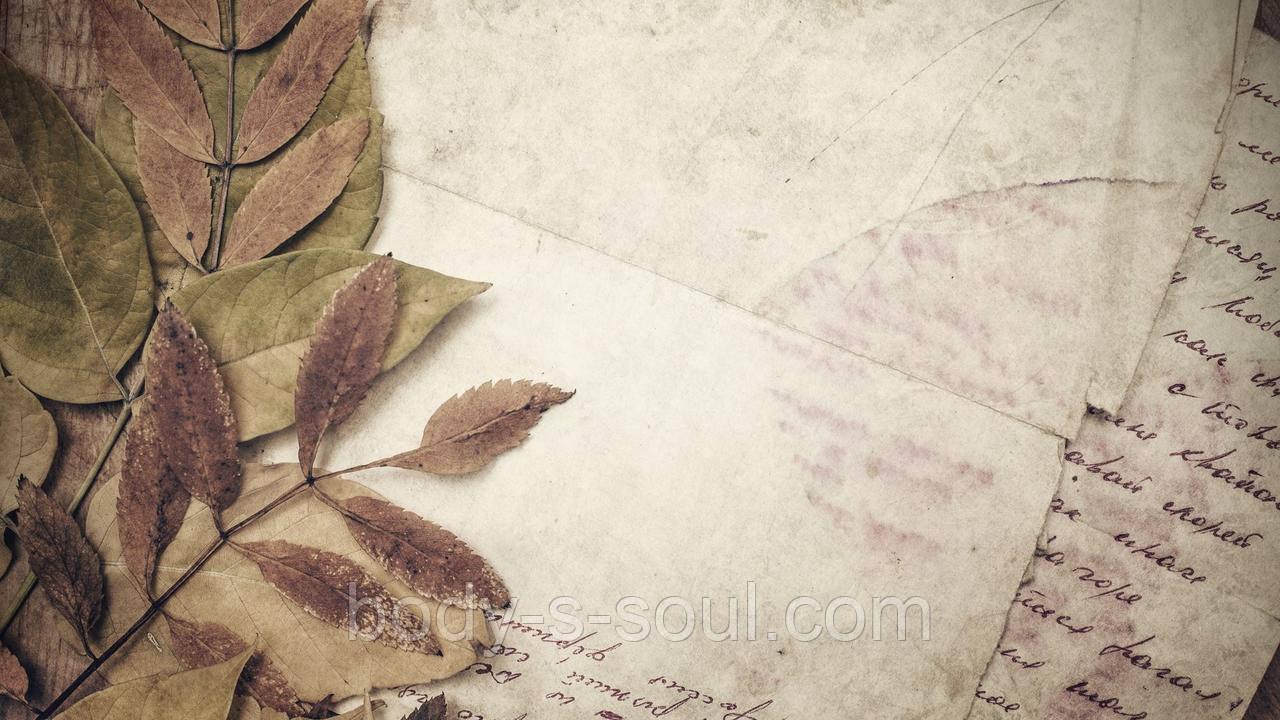 Фотофон виниловый, осень 31