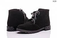 Женские ботинки на шнурках замшевые 1029
