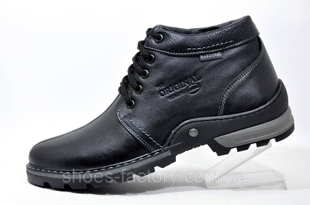 Кожаные ботинки мужские Kardinal, зимние на меху