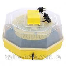 Инкубатор бытовой CLEO 5DT с механическим поворотом яиц, Румыния