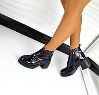 Стильные демисезонные лаковые ботинки черного цвета на широком каблуке