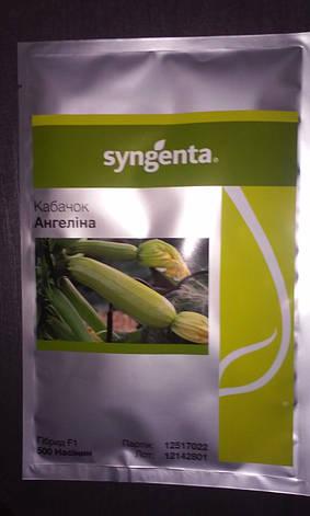 Насіння Кабачок Ангеліна Ф1 Angelina F1 10 н Ангеліна Голландія, Syngenta, фото 2