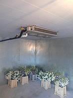 Холодильное оборудование для камер хранения цветов.